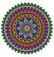 mandala with colored ornaments for design vector image vector image