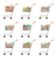 set food carts supermarket vector image