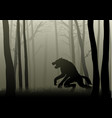 werewolf in the dark woods vector image vector image