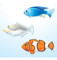 detailed tropical fishes vector image vector image
