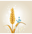 ear of wheat and flowers vector image