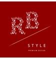 Letter B R from roses Monogram design elements vector image