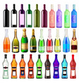 set bottles wine champagne and martini of vector image