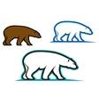 Wild bears vector image vector image