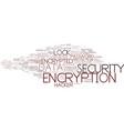 encryption word cloud concept vector image
