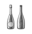 ink sketch champagne bottle vector image vector image