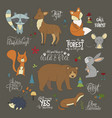 set of hannddrawn cute forest animals vector image vector image