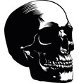 skull image vector image vector image
