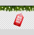 winter sale tag with christmas branches of tree vector image