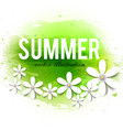beautiful summer background with white flowers vector image vector image