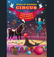 big top circus acrobat equilibrist animals show vector image