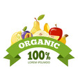 natural fresh food fruits logo badge vector image vector image