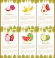 rambutan and banana chompoo and pitaya watermalon vector image vector image