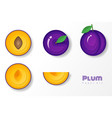 set of plums in paper art style vector image