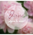 Summer concept with some peonies on the background vector image vector image