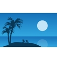 Summer holiday silhouette at the night vector image vector image