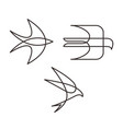 swallow logo icon mono line design set vector image