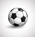 World football championship ball vector image