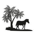 zebra and trees black silhouette vector image