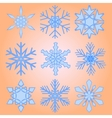 A set of nine snowflakes Christmas vector image vector image