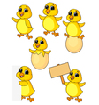 Cute baby chicken cartoon set vector image vector image