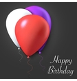 happy birthday gift card poster vector image