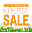 mothers day sale poster limited time only shopping vector image vector image