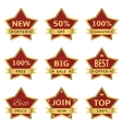 red stars labels vector image vector image