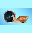 snail with slow internet speed meter test vector image