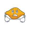 Angry conchiglie pasta mascot cartoon