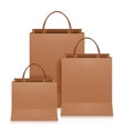 Brown Shopping Bags vector image