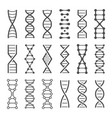 dna spiral icon human genetics code genom model vector image