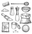 sea salt sketch vintage hand mill with spice and vector image