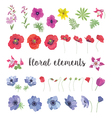 Set of Floral Elements for your Design vector image