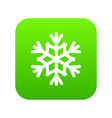 snowflake icon digital green vector image