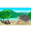 Tortoise near the river seamless animal and vector image vector image