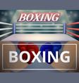 boxing ring banner set cartoon style vector image vector image