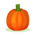 flat icon of large pumpkin bright orange vector image vector image