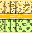 fruit seamless pattern set vector image