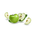 green apples on a white background vector image vector image