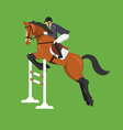 Horse Jumping Over Fence Equestrian sport vector image vector image
