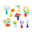 set icons flowers chamomile gerber and tulip vector image