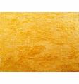 texture golden surface vector image