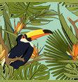 tropical yellow black toucan exotic palm monstera vector image
