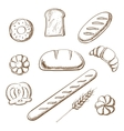 Bakery and pastry object sketches vector image vector image
