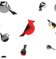 bird different types of animals bullfinch seamless vector image