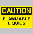 caution sign symbol vector image vector image
