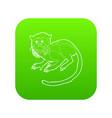imperial tamarin icon green vector image vector image