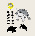 Turtle Silhouettes and Logo vector image vector image
