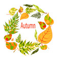 autumnal round frame hand drawn autumn leaves vector image